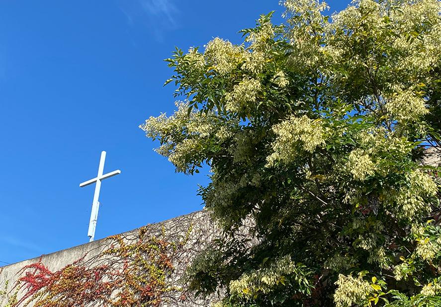 tokushimakita1 - 徳島北教会